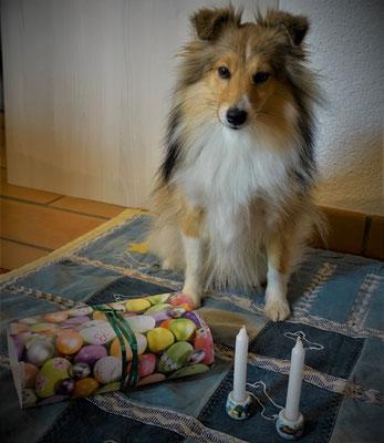 Queeny's 2. Geburtstag