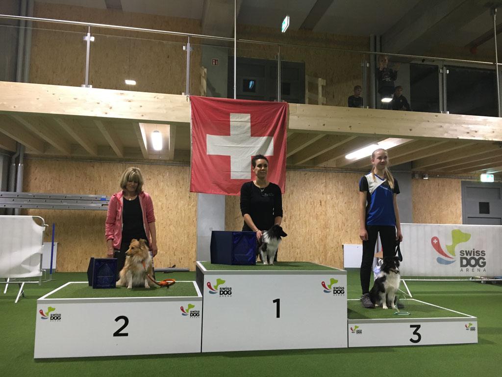 Agility Schweizermeisterschaft für Shelties/Swiss Dog Arena Münsingen