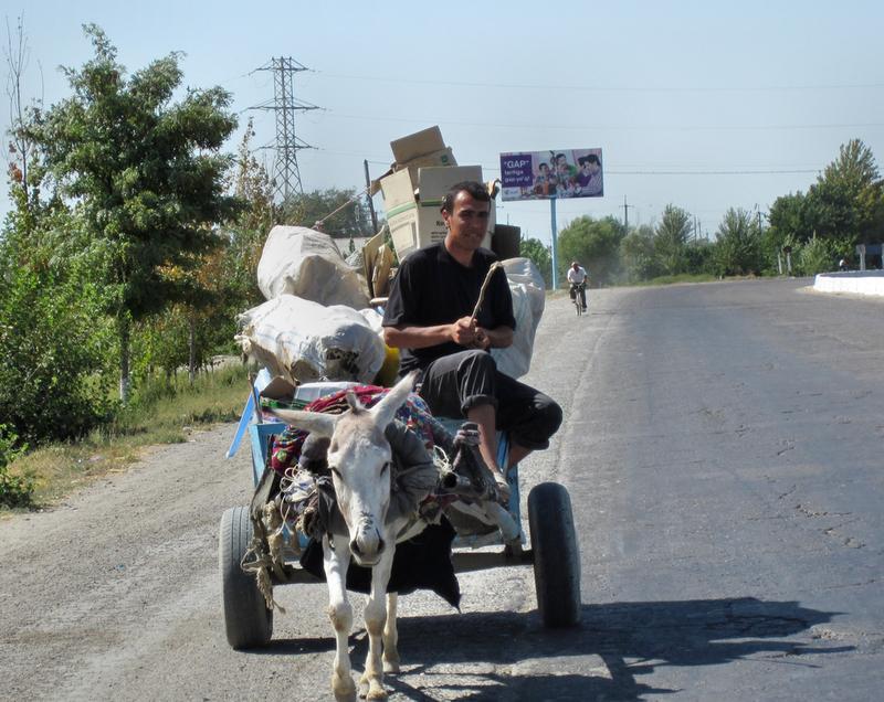 Der Eselkarren ist hier das Transportmittel Nr. 1