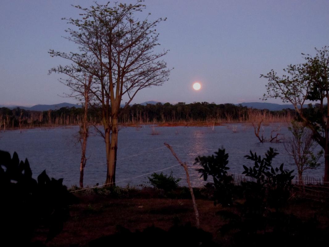 Nachts an einem wunderbarem See