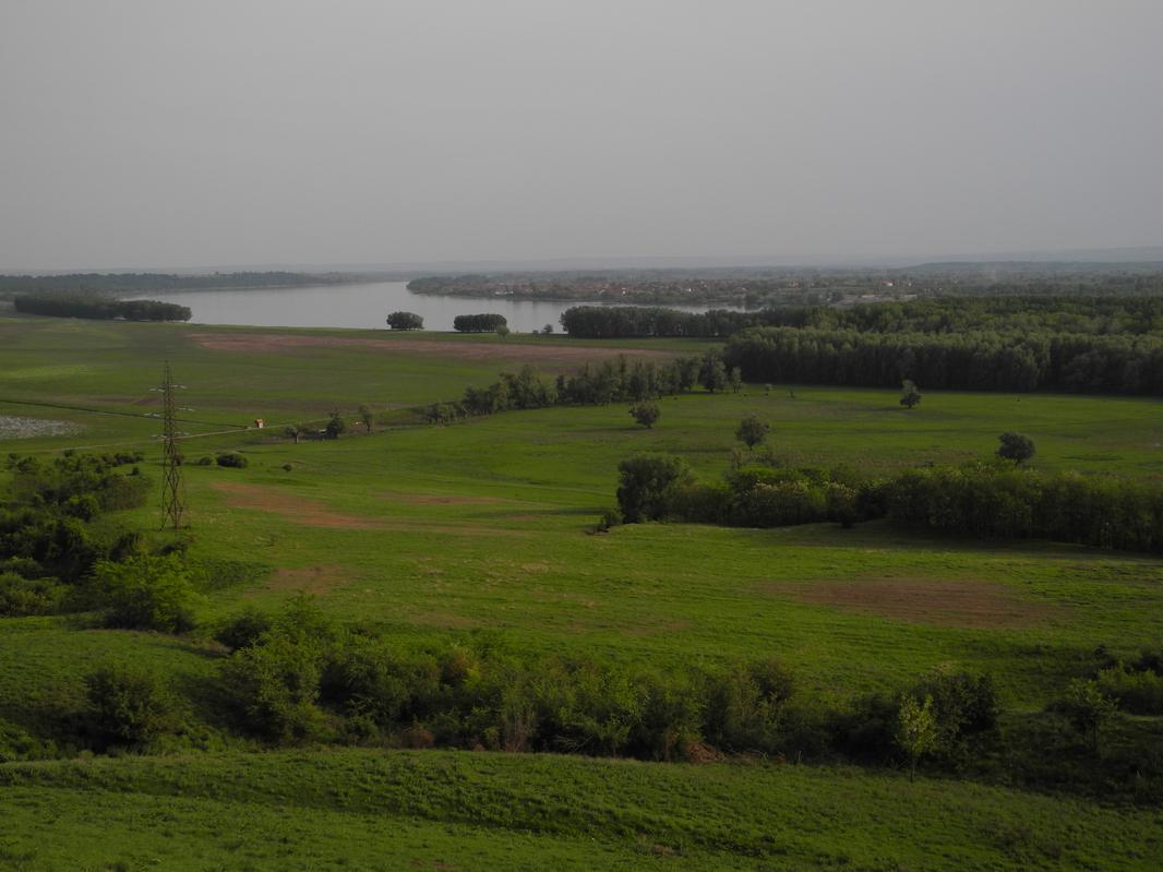 Donauaue