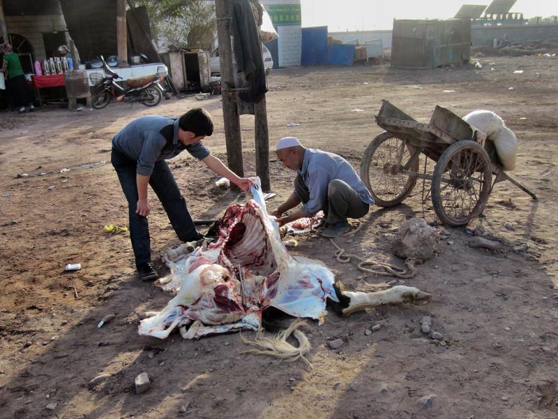 Das Vieh wird direkt vor der Gaststätte geschlachtet