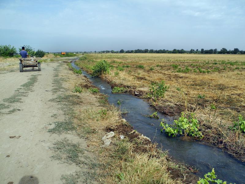 Alle Felder brauchen Bewässerung