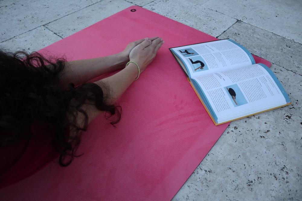 Hatha Yoga Bücher