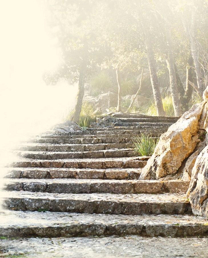 Eine Treppe aus Natursteinen zeigt ein Fundament, auf das wir stufenweise emporsteigen. Eine Massage von taloha unterschützt das Körperbewusstsein als Basis von Wohlbefinden und Gesundheit.