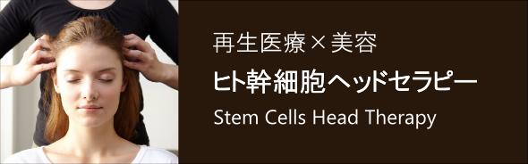 ヒト幹細胞ヘッドセラピー講座