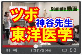 ツボと東洋医学講習(神谷先生)