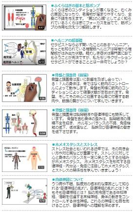 ヘッドライフ 無料動画2