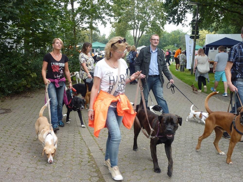 DogWalk 2014  - Foto Oetken