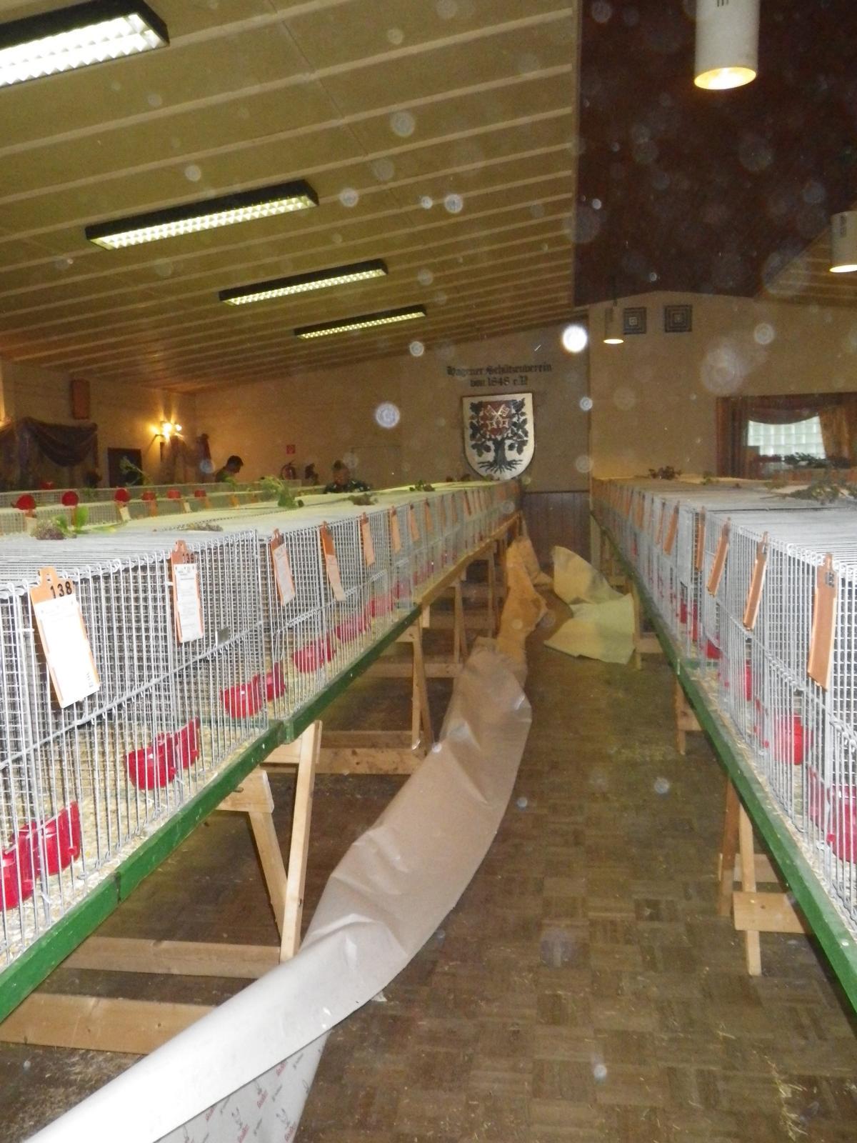 Noch während die letzten Besucher auf dem Heimweg sind, wurden bereits die Tiere wieder eingepackt und in ihre Ställe gebracht.