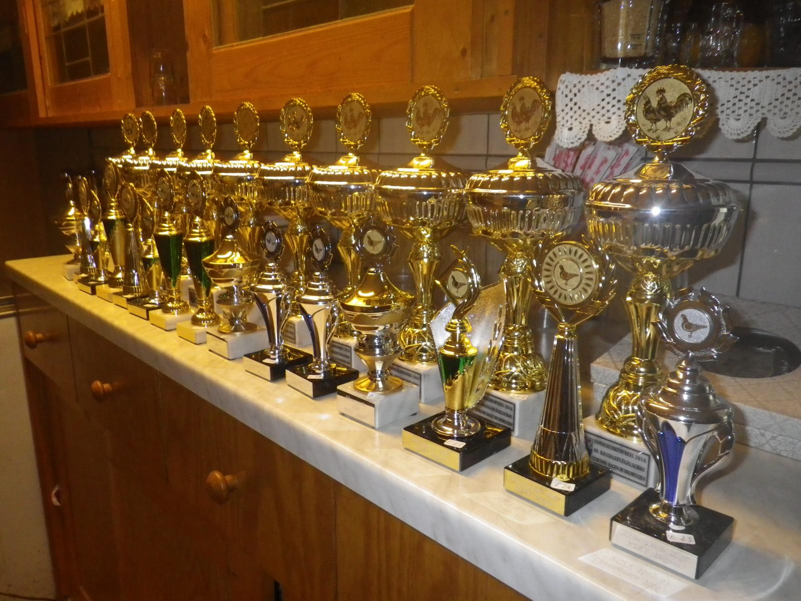 Die Pokale sind eingetroffen und können schon einmal vorab besichtigt werden.