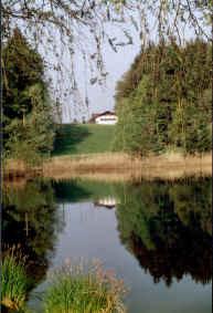 Buchsee