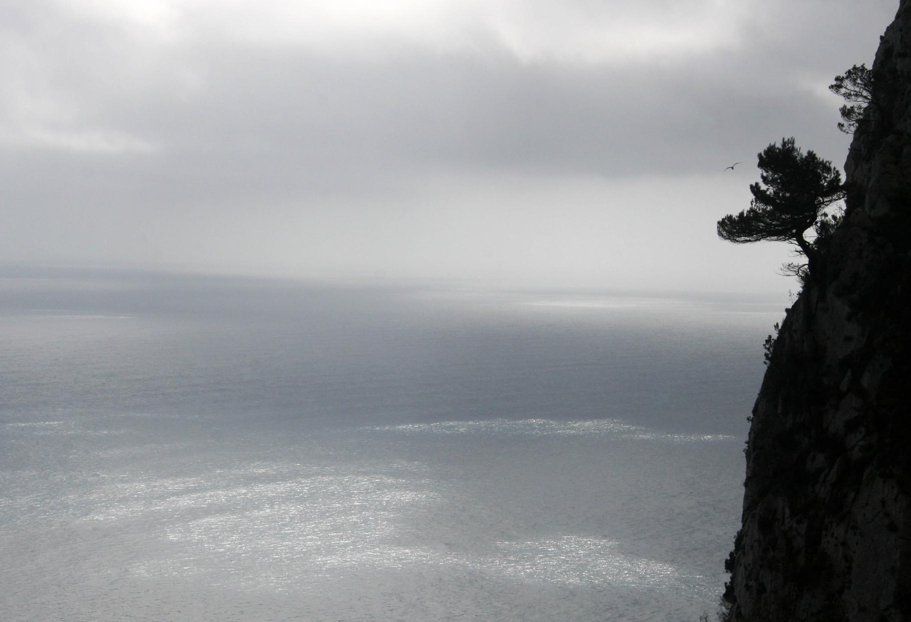 """"""" ... das weite Meer mit all den krakeligen Unregelmäßigkeiten, die der Wind in die unruhige Wasseroberfläche drückte"""""""