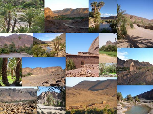 Environnement de l'auberge, dans le sud marocain
