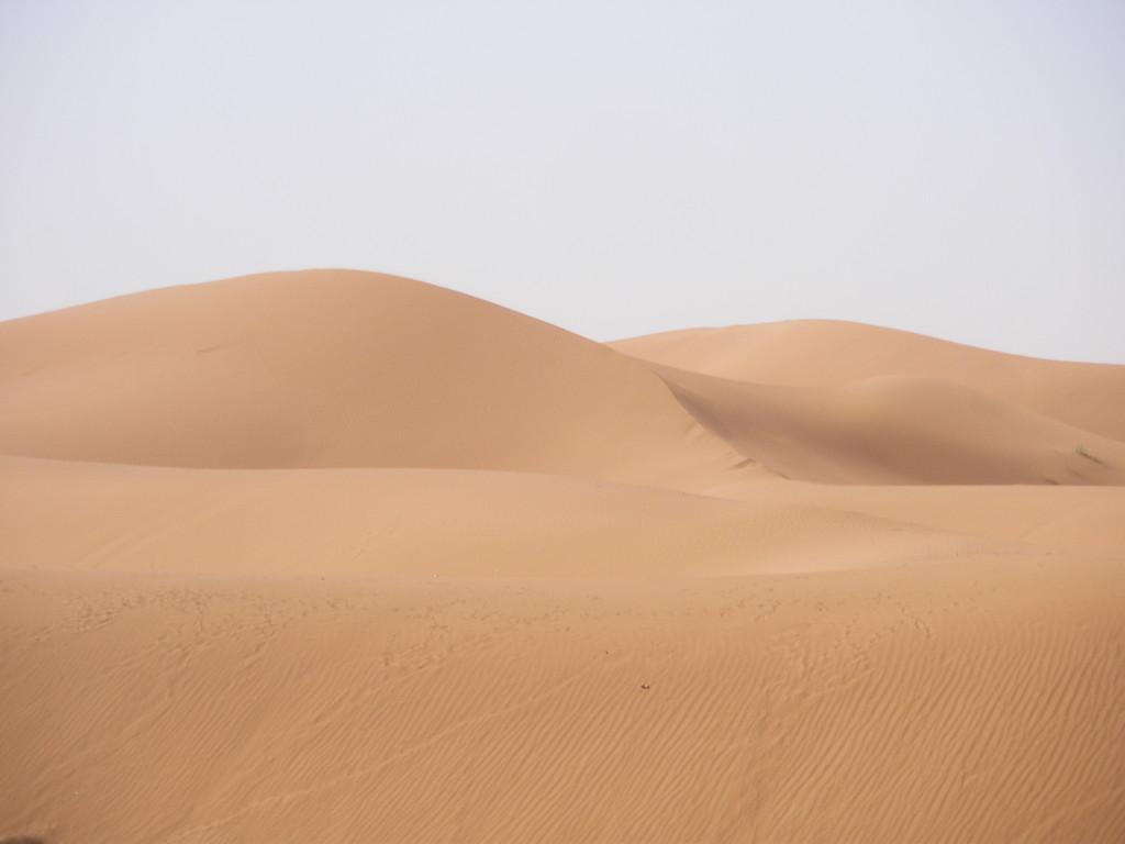 Dunes de M'Hamid