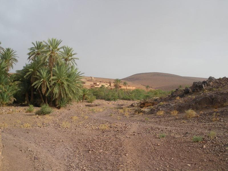 Un village dans la région de Skoura
