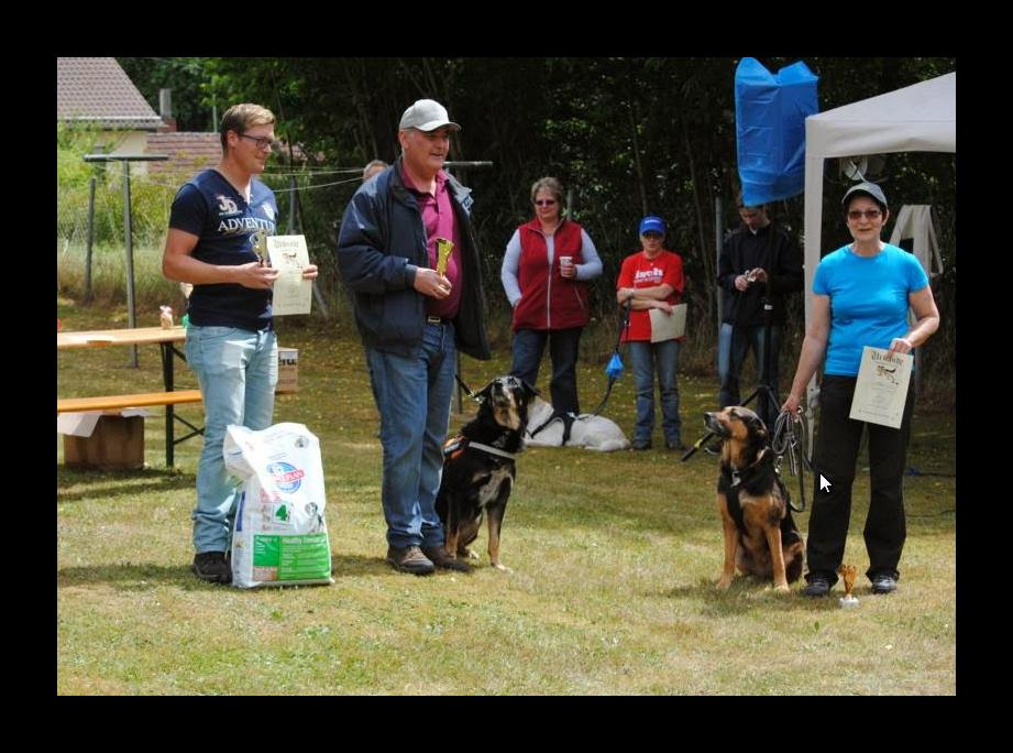 Siegerehrung - Große Hunde