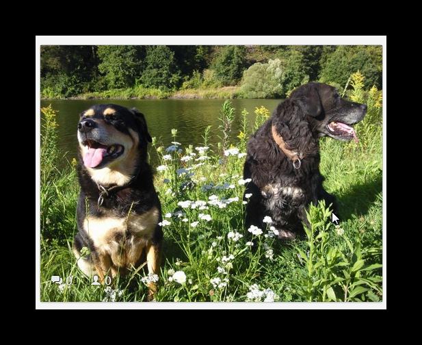Chico und Apache