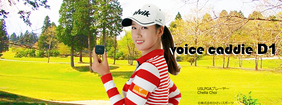 voicecaddie D1