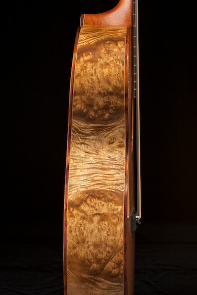 Mesmerizing Oregon Myrtle Burl