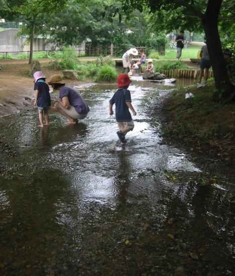 8月18日(2010) 湧き水の流れる場所(野川公園)