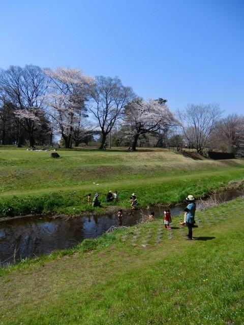 野川の中に入り、元気に遊ぶ子供たち。まるで真夏の光景にまたびっくり!!