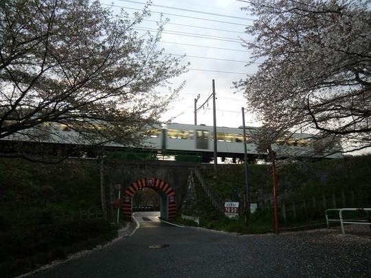 帰路、西武多摩川線の小さなトンネルのところで