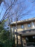 日立中央研究所(庭園)