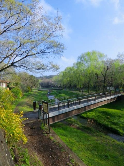 野川にかかる橋を渡り、右岸にむかった