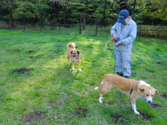 湧水広場で、先ほど野川左岸で犬を連れて歩いていた方(原田さん)に出会った