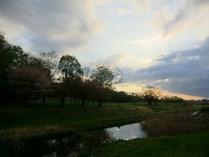 野川の夕暮れ