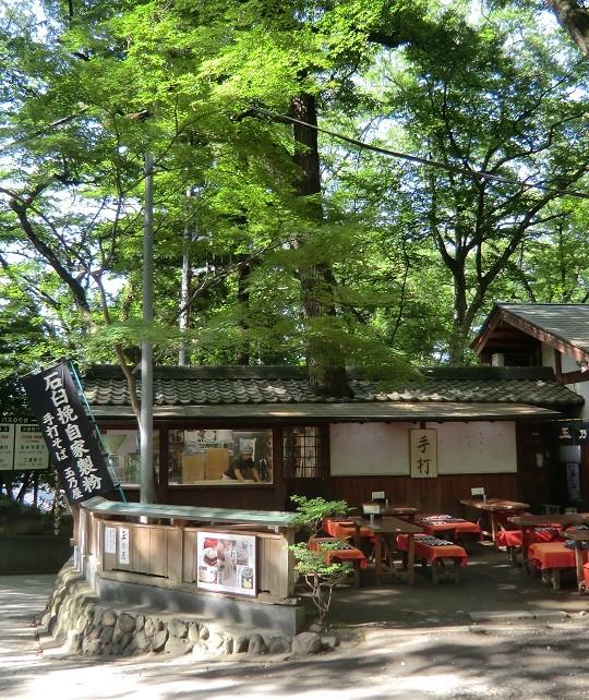 6月7日(2013) 新緑の蕎麦屋:そばを打っている部屋の屋根から木が現れている(神代植物公園・深大寺門の近くで)