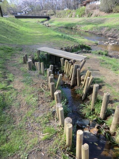 湧水が野川にそそいで行くところ