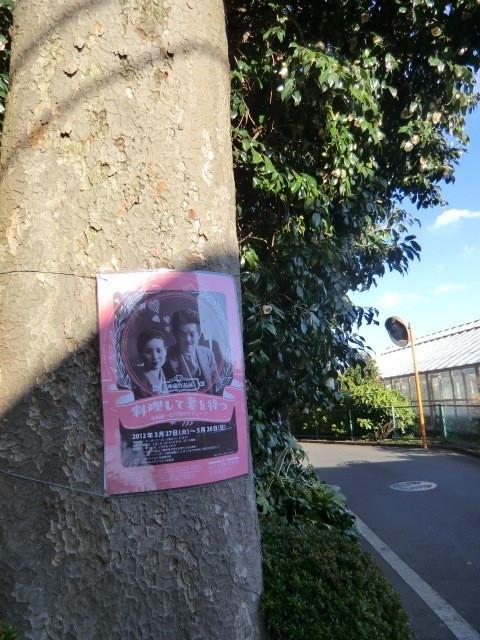 近くの道横の大木に貼られていたポスター