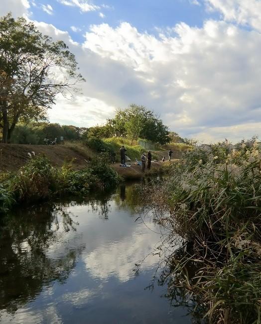 11月15日(2013)野川と釣りを楽しむ人たち