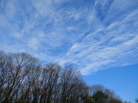 空がきれいに見えてきた