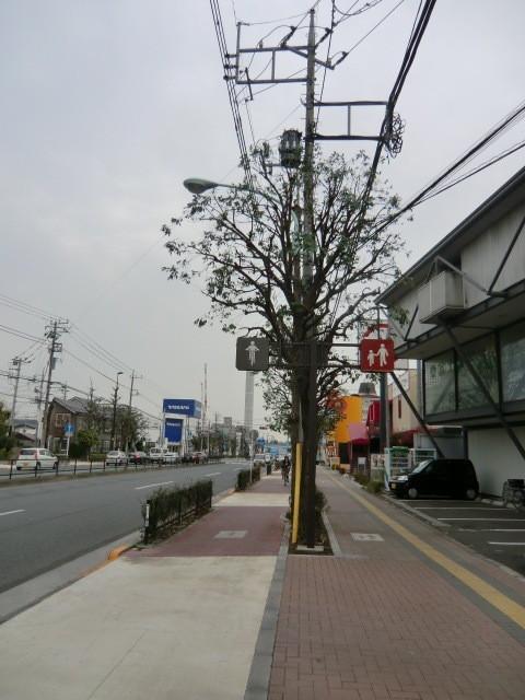東八道路を自転車で東進。この道は、とても広く、自転車と歩道が分けられているところも多いので、自転車移動の基幹的な道として便利