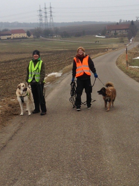 Mantrailing Korneuburg - Betti & Tarek, Alina & Nala