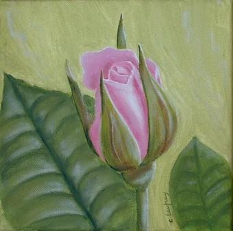 """""""Bouton de rose"""" - acrylique - 20 x 20 cm"""