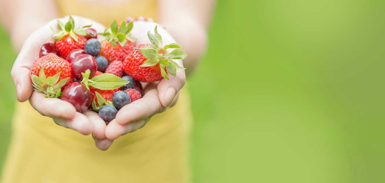 Diététicienne & Nutritionniste