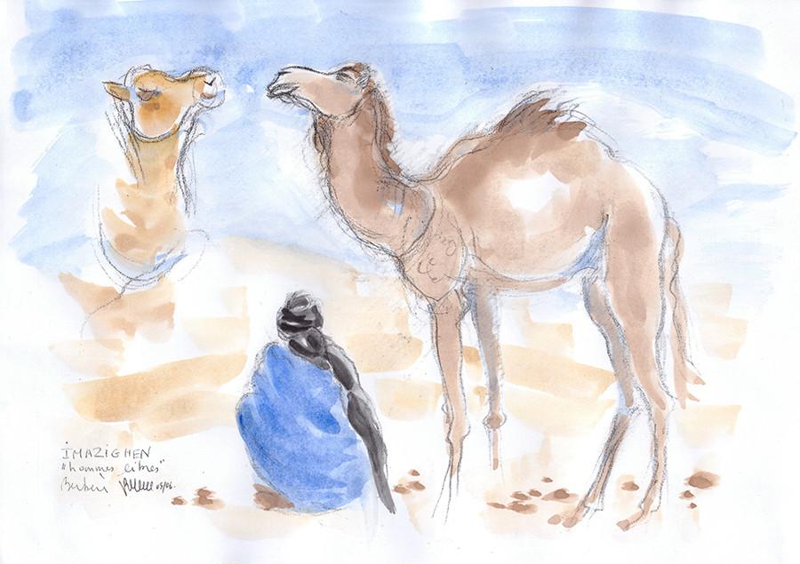 Targui assis et dromadaires (carnets de voyage) réf MRC010 : vente reproduction