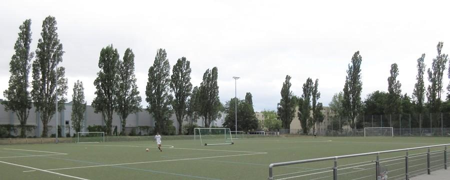 Öffentliche Sportanlage (ca 200 m entfernt)