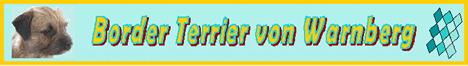Border Terrier von Warnberg