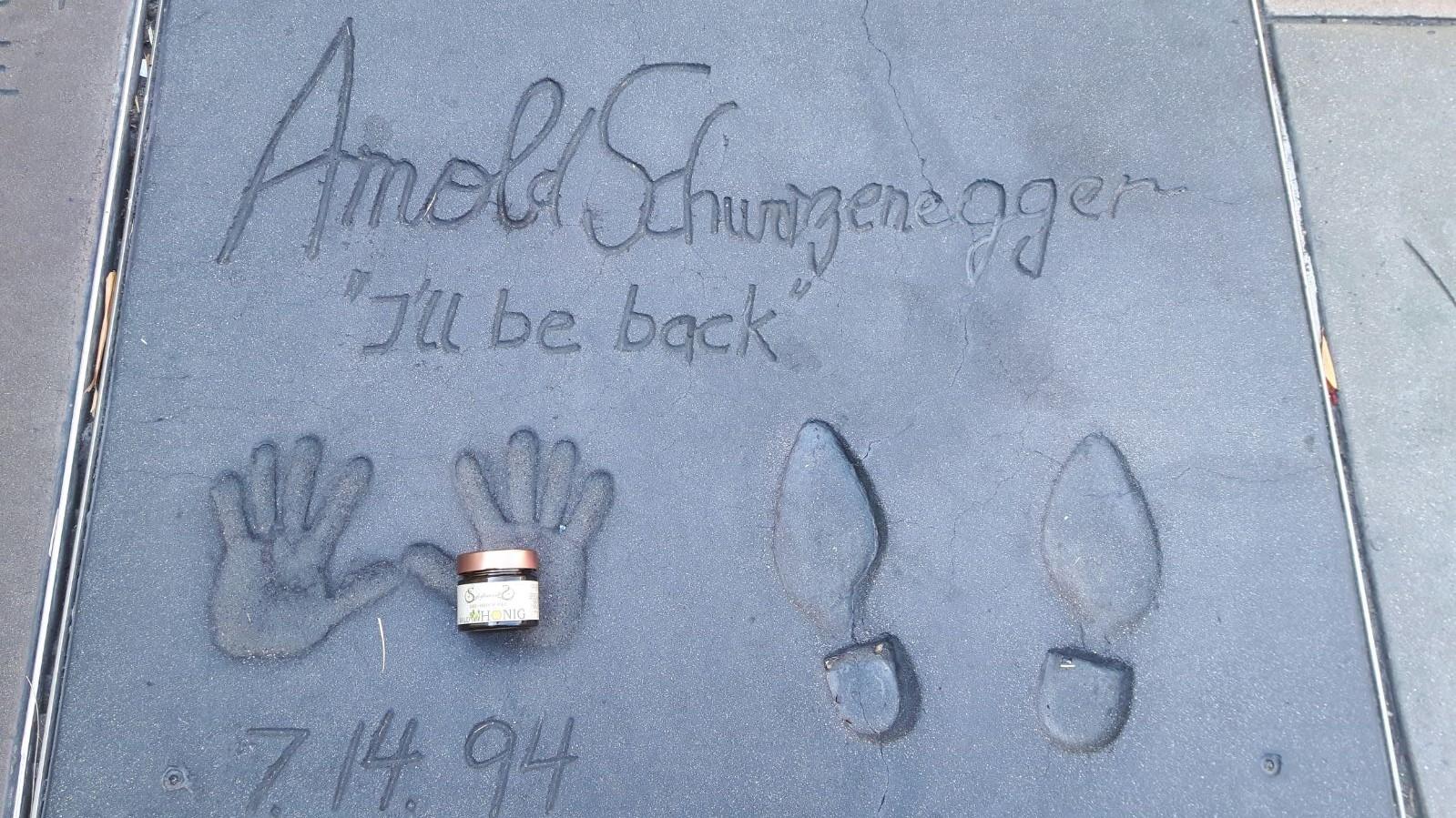 Bio-Honig bestens aufgehoben in Arnold Schwarzenneggers Händen
