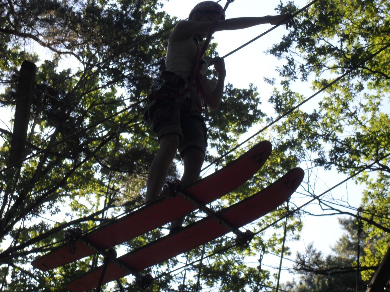 Ski fahren in den Bäumen - wer hätte damit gerechnet ;)