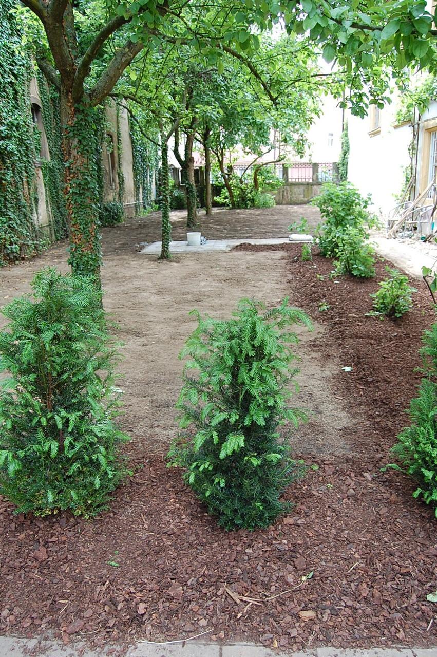 Hoffentlich wächst der Rasen gut und schnell!
