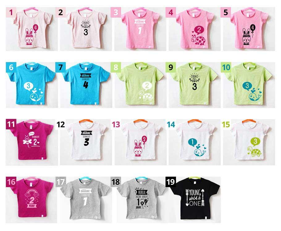 Geburtstagsshirt - Farbkombinationen -nähfein
