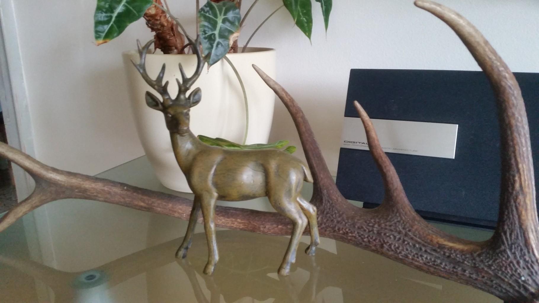 Dekoartikel Jagd und Natur
