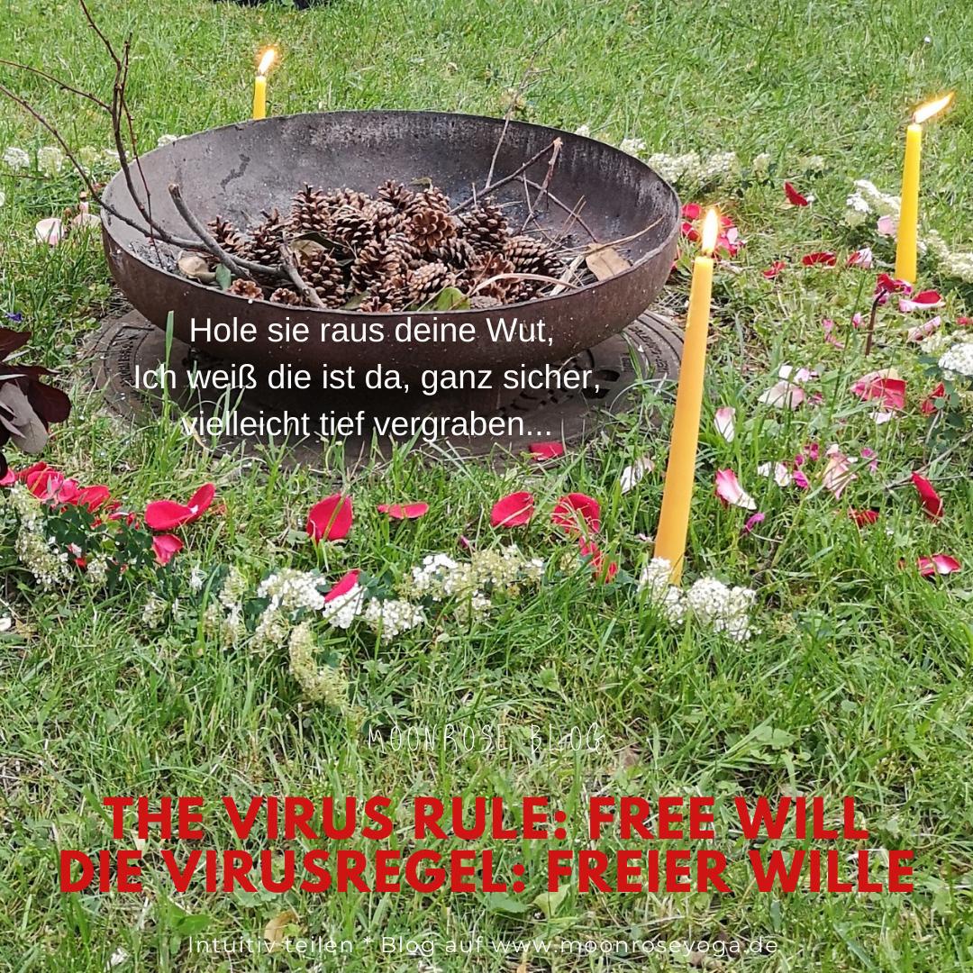 The Virus rule: free will * Die Virusregel: freier Wille