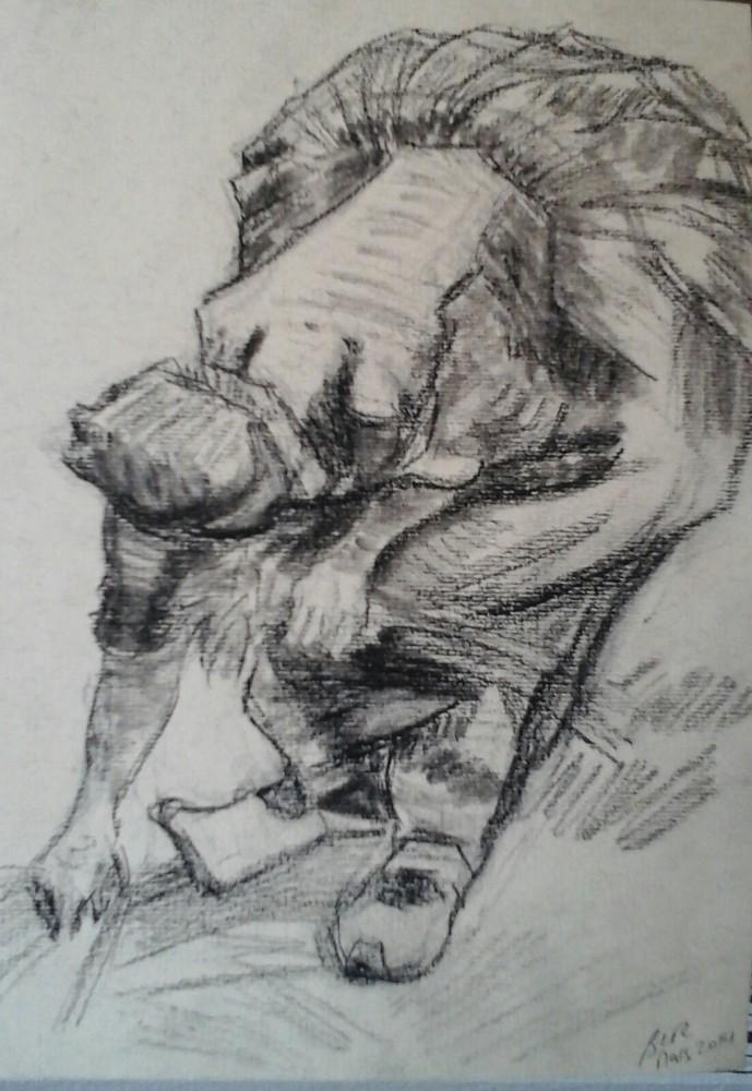 Reproduction au crayon et fusain;par B C Ruiz  non encadrée.20 € (encadrement sur demande)